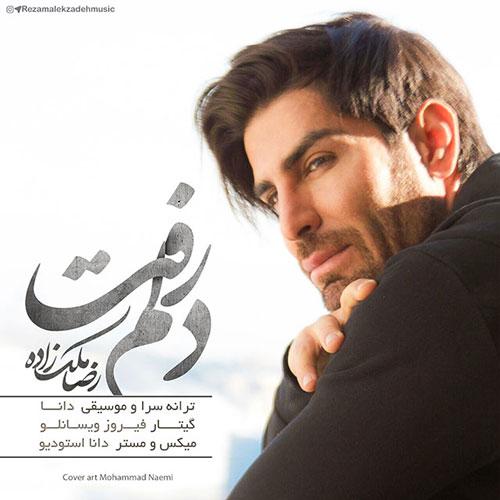 رضا ملک زاده دلم رفت
