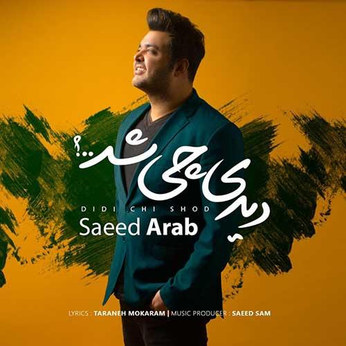 سعید عرب دیدی چی شد