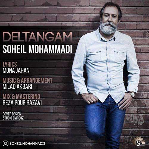 سهیل محمدی دلتنگم