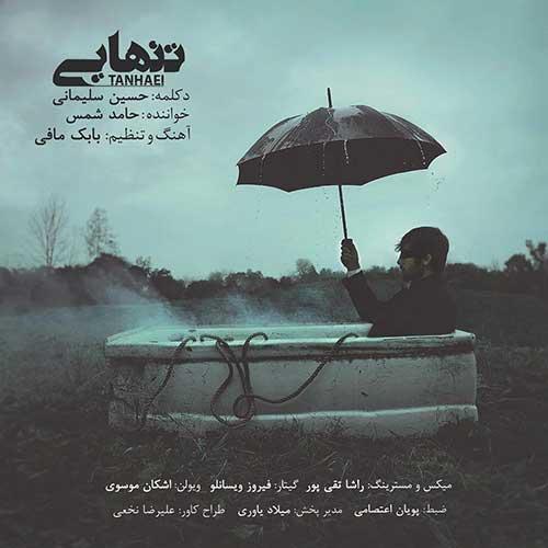 حسین سلیمانی و حامد شمس تنهایی