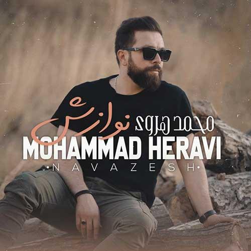 محمد هروی نوازش